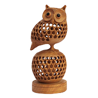 Owl Sitting On A Globe